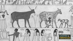 Ancient Egyptian Jobs 1