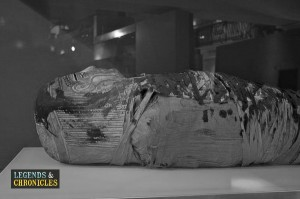 Ancient Egyptian Mummies 1